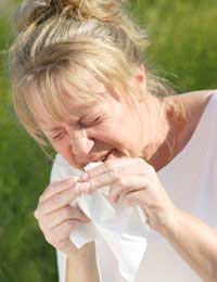 Hay-fever allergy contact Lenses